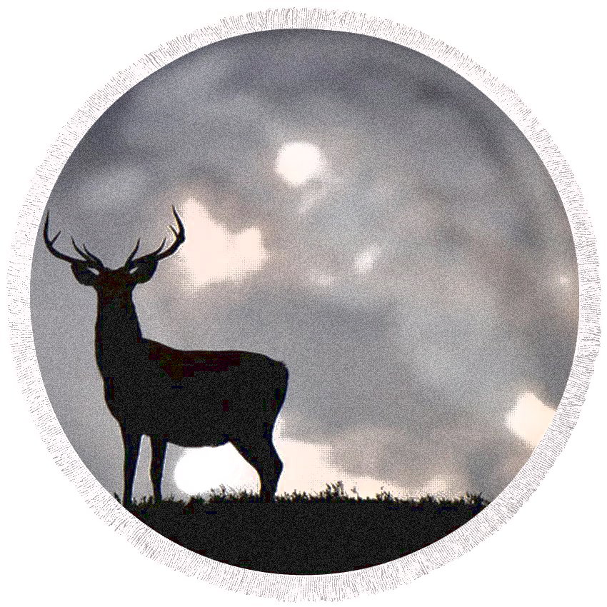 stag silhouette